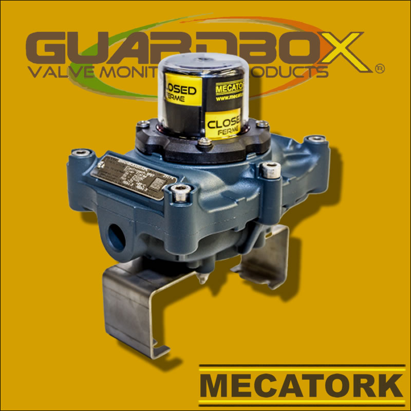 Boitier GD Guardbox